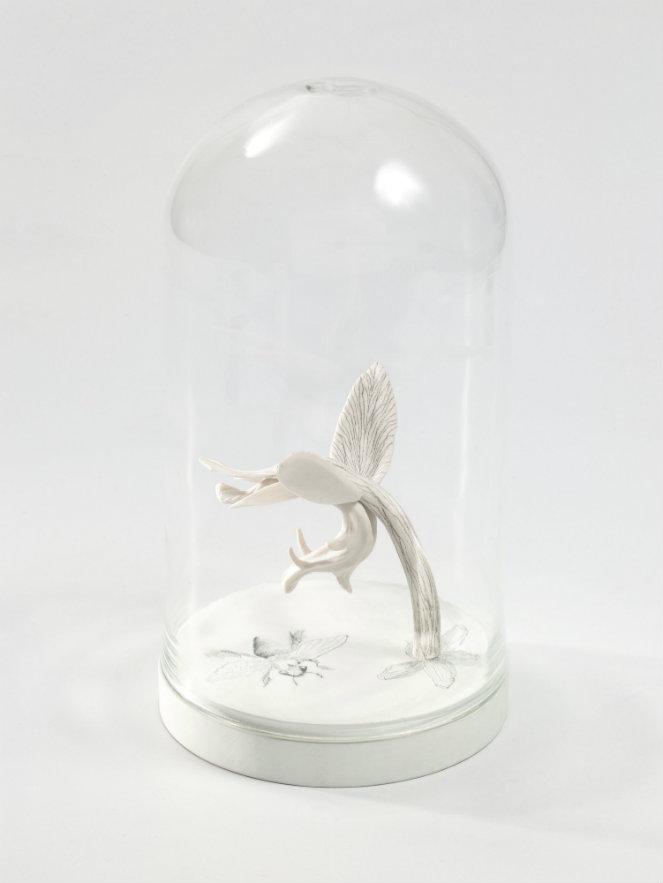 Ana González. Botánica VI. Porcelana blanca dibujada en campana de vidrio. 30 x 15 cm. 2015. Fotografía: cortesía, galería La Cometa.
